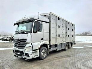 MERCEDES-BENZ Actros 2543 6x2 livestock truck