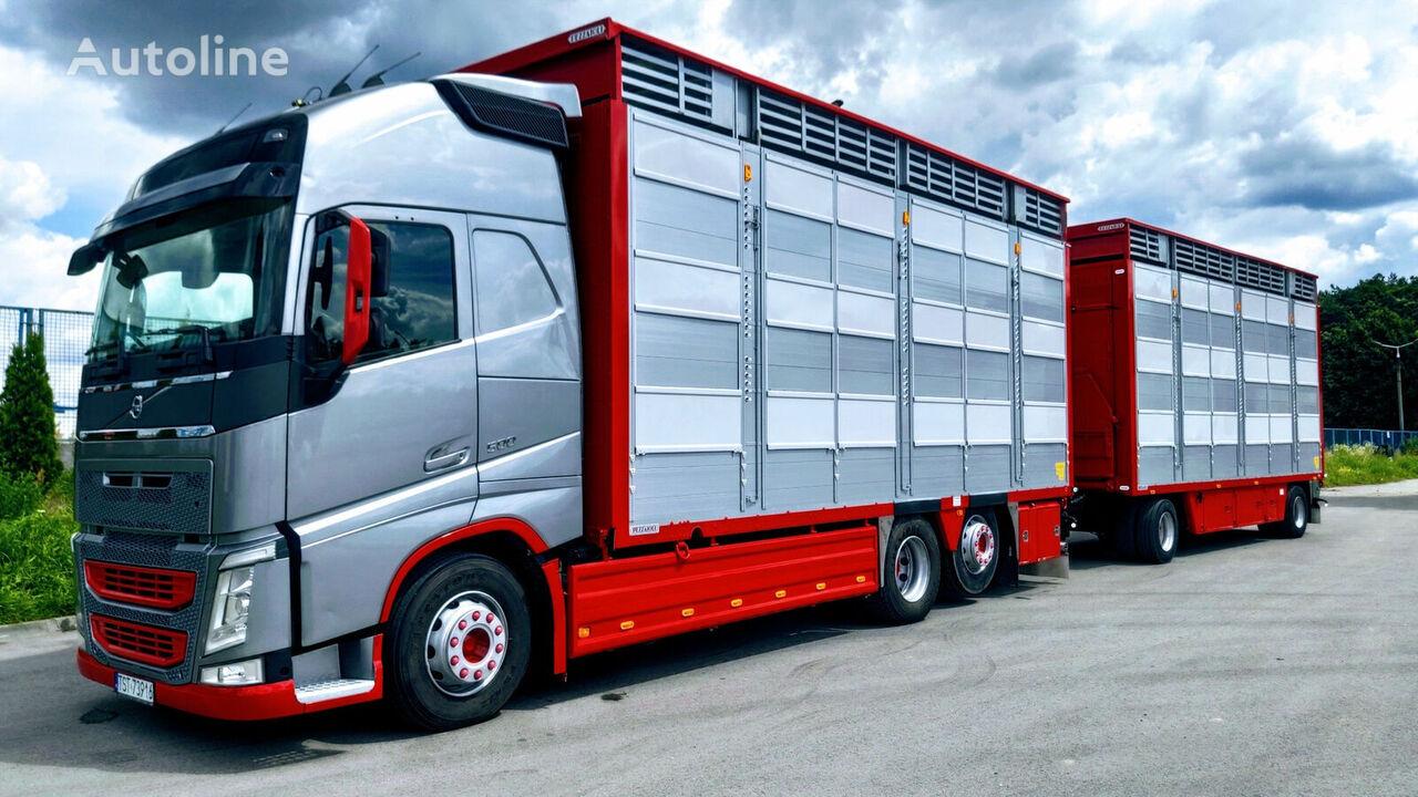 VOLVO  Fh500 Pezzaioli 3 Stock + trailer livestock truck